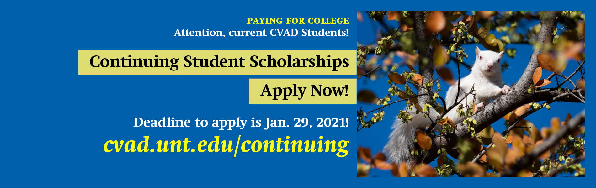 Apply now for a CVAD Continuing Scholarship